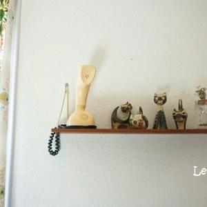 スーホルムの猫ちゃん4兄弟