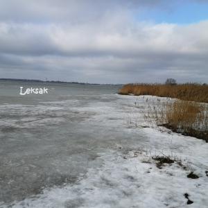 凍った海で…