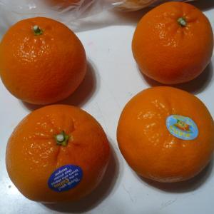 まずい・・・アメリカ産オレンジ