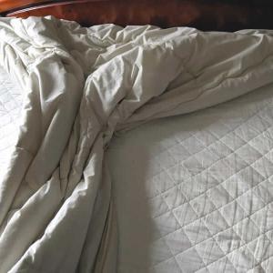 【季節の変わり目の布団】夏場や梅雨の薄手の掛け布団 我が家の場合