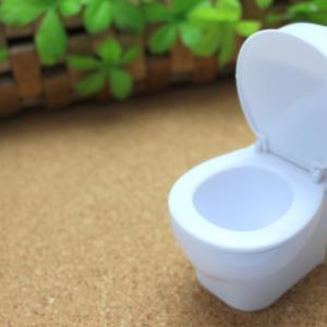 【風水でこだわるべきトイレの方角】間取りと色の秘密アイテムとは?