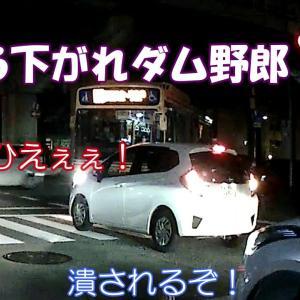【ざまぁw】左折の邪魔!赤信号と停止線を無視した乗用車が、最後に押し返される【笑点♪】