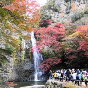 ☆紅葉を見に家族で行ってきました @箕面の滝☆