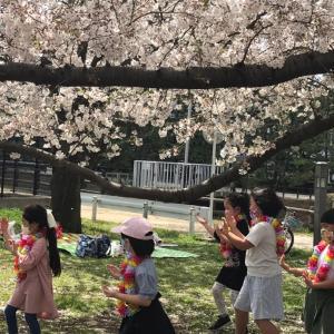 桜の下で楽しい1日を過ごしました