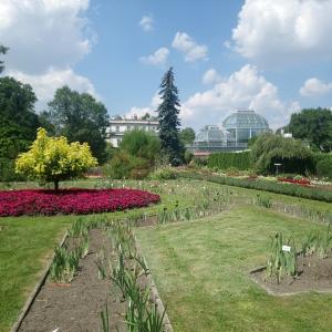 植物園と水分補給