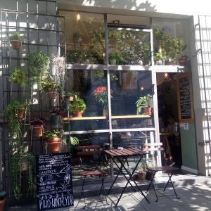 SZKLARNIA温室カフェ&アイス