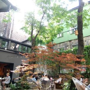 秘密にしたい中庭カフェ!