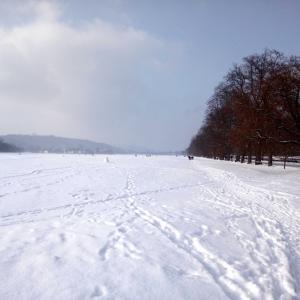 パウダースノー!雪遊び