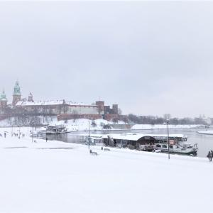 凍り始めた川と実験