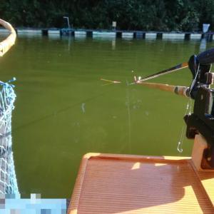19.9.7 遠くに釣りに行ってきたよというハナシ