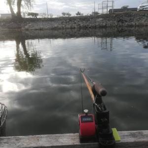 19.4.29 ほのぼの筑波流源湖