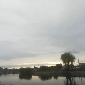 19.6.9 毎度の筑波流源湖