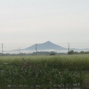 19.6.23 大撃沈、第四日曜日の筑波流源湖