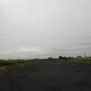 19.7.20 土曜日の筑波流源湖