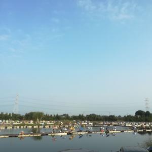 19.8.4 猛暑の筑波流源湖