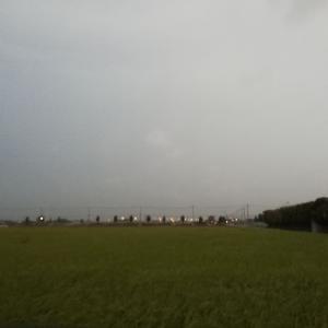 19.8.16 お久しぶりの椎の木湖
