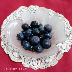 無農薬の甘いブルーベリーはいかがですか?