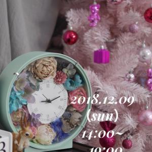 【フォトグラフ】蔦屋書店 嘉島 さんでクリスマス撮影会開催します♡