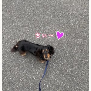 ★海散歩〜★