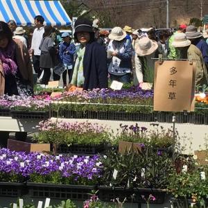 花好きの人たちの 嬉しい市