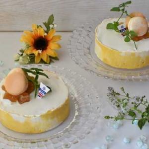 マンゴーマーブルレアチーズケーキ