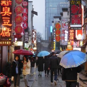 特に東京は検査数で感染者数を調整してるだけなのに第2波とは?