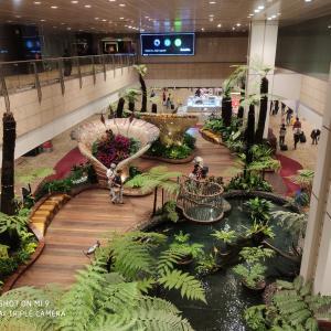 【危険】シンガポールですら感染者急増で感染者が9千人を超える!