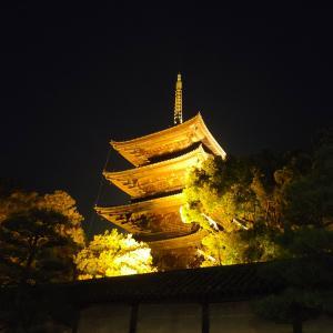 3ヵ月千円のコロナ保険で10万円ももらえるほど日本は感染者が少ない?動画集42