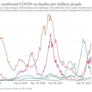 【悲報】日本人はコロナ集団免疫を去年6月に獲得?1年以上無駄にしたことがわかる動画!動画集241