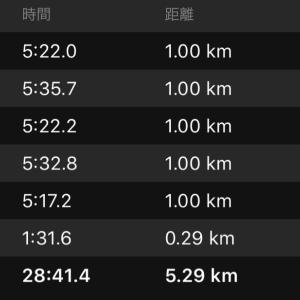 明日は赤羽10km