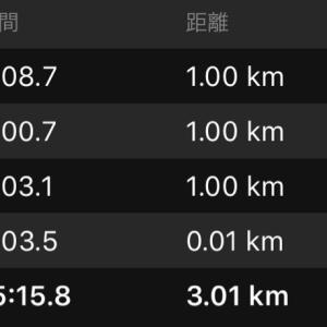 明日は東京マラソン試走、小江戸大江戸頑張れ!