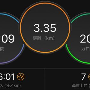 月間走行距離の記録更新間近、Nike 25% OFF
