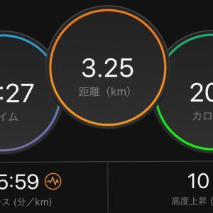 フルマラソン1日後〜3日後