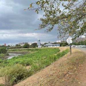 10km@鶴見川、大井川トライアルマラソン、ぐんまマラソンは...