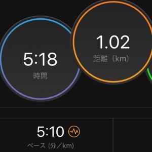 よこはま月例マラソン1km→5km→3km→5km→3.8kmジョグ