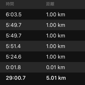 ジョグ5kmと一昨年の富士登山競走