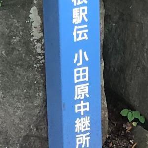 夏の箱根5区6区 2019