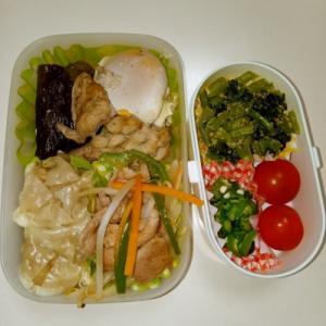 鶏ナス卵・シュウマイ・肉野菜炒め
