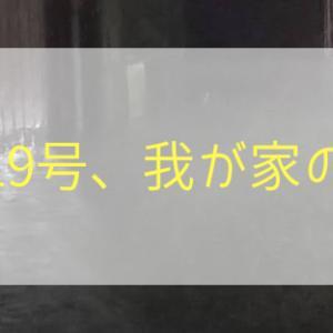 台風19号、我が家の様子