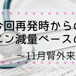 今回再発時からのプレドニン減量ペースのまとめ~11月腎外来通院記録~