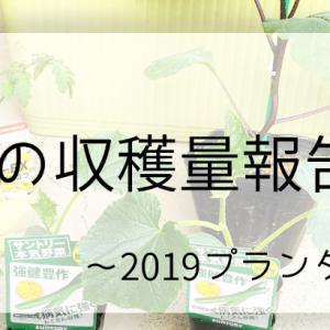 夏野菜の収穫量報告です!~2019プランター栽培7~