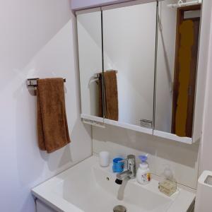 洗面所のティッシュの位置問題・100均のアレを使ってみた
