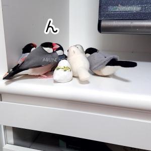 ちっちゃい子クラブ 鳥の部