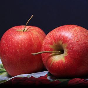 家籠りの簡単アップルパイ作り
