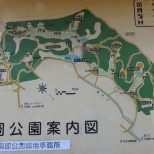 2/23(日)【夕暮れ探鳥会】 横浜・舞岡公園探鳥会