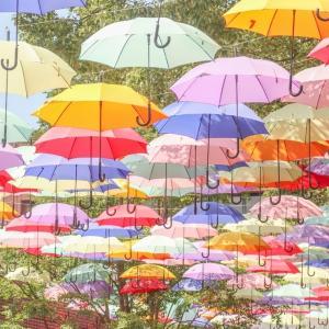 めざましテレビ「イマドキ!」2021年6月3日放送・岡本莉音ちゃんが紹介していた「梅雨の時期おすすめの傘」をリサーチ!