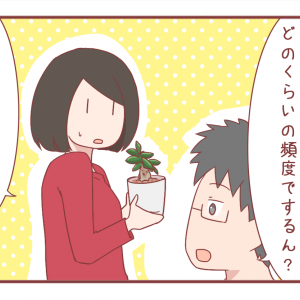 植物の世話の仕方の説明が難しい【1086】