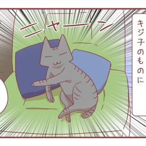 うちの猫が緑色のソファや布団を愛用する理由は…?【1088】