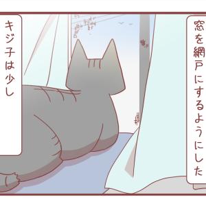 ウツっぽい猫さんのために対策をしてみたけれど【1201】