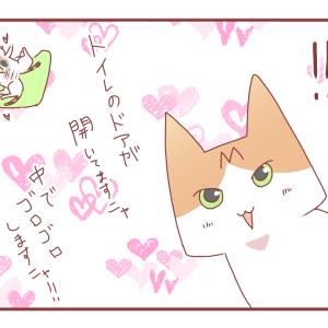 撤去したマットが猫さんのお気に入りだった結果【1410】